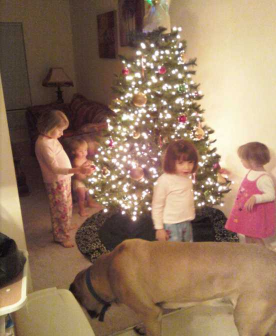 a-holiday-weekend-the-ladies-at-the-tree